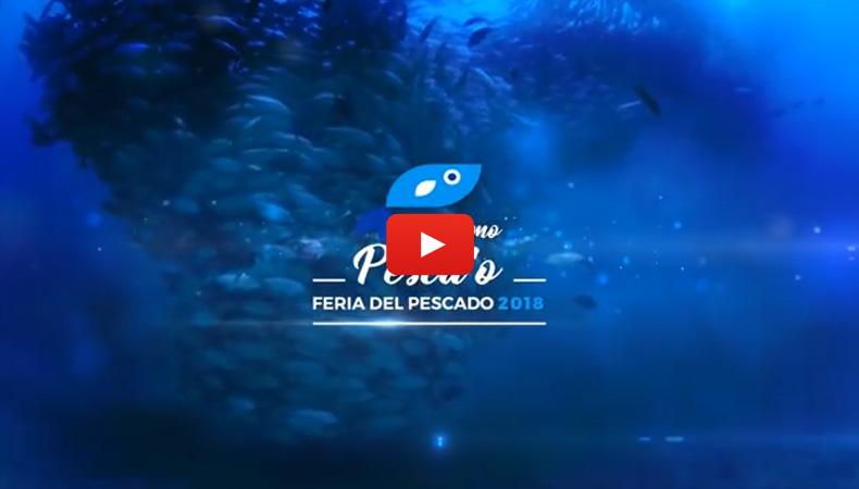 Video Promocional Feria 2018